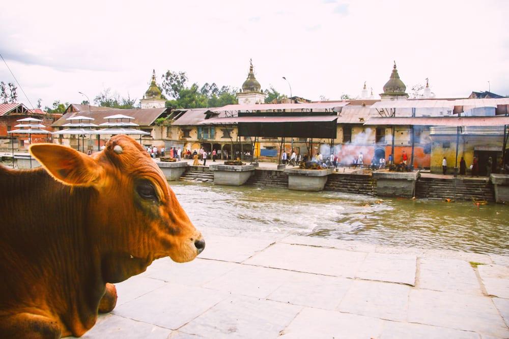 Nepal-69