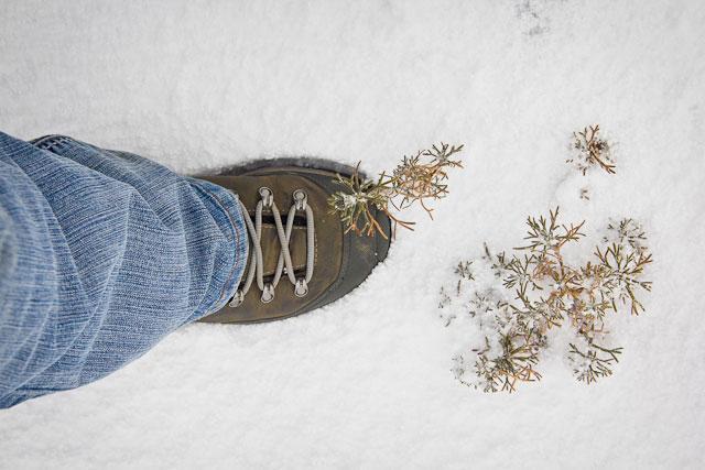 Landy, Snow Adventure - Andy's Birthday, Sani Pass - July 2012 (35)