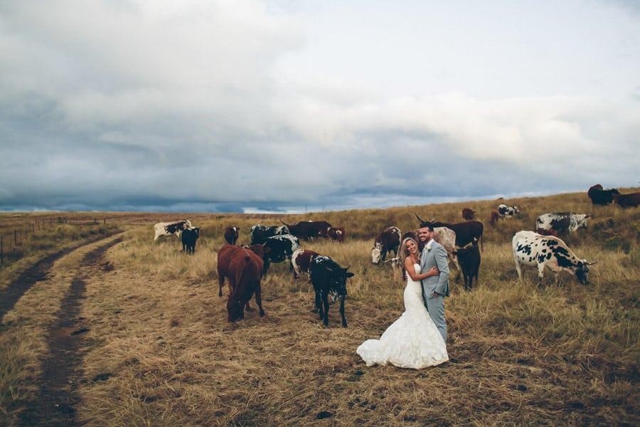 Candice-Byron_Netherwood-Wedding-146